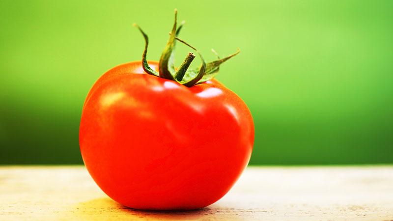 السعرات الحرارية في الطماطم Just Food